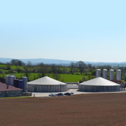 JMW Farms